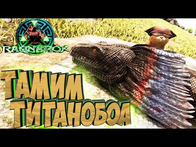 ПРИРУЧАЕМ ТИТАНОБОА - ARK Survival Evolved Выживание на Ragnarok 15