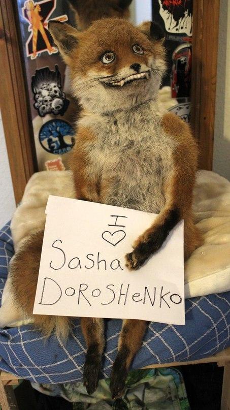Саша Дорошенко | Харьков