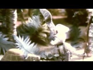 Бояка мухи не обидит - Фильм 2. Бояка учится летать