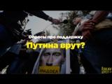 Опросы про поддержку Путина врут?