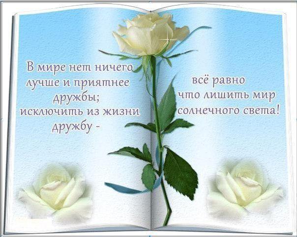 http://cs616117.vk.me/v616117862/9e94/3CKHSz0WG20.jpg