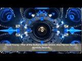David Young - War of the Buttons (Sonic Union, Alex Nemec Remix)