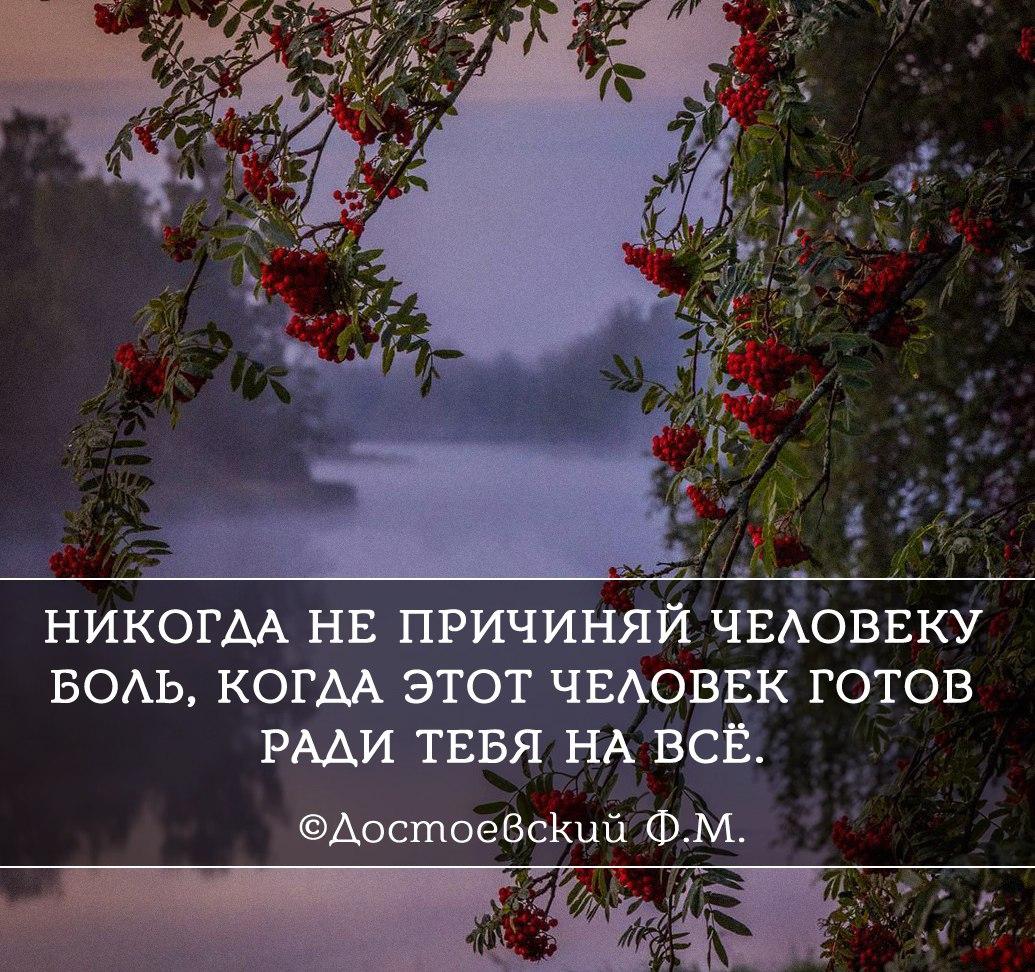 https://pp.userapi.com/c846124/v846124901/b7737/gYSffy1-OFU.jpg