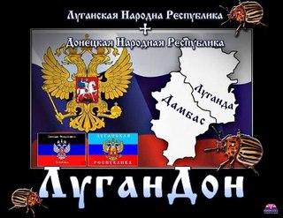 """Украинские артиллеристы ведут обстрел террористов с горы Карачун: """"Мы на своей территории. Это благородная война с мерзавцами"""" - Цензор.НЕТ 8851"""