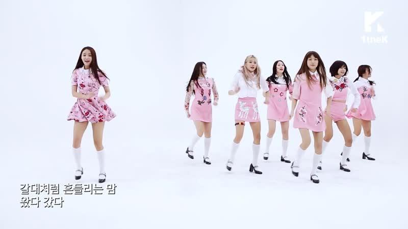 "[Mirrored] MOMOLAND(모모랜드)_JJan! Koong! Kwang! Choreography(짠쿵쾅) 거울모드 안무영상)_1theK Dance Cover Contest""},""sts"" 17850,""assets"" {""cs"