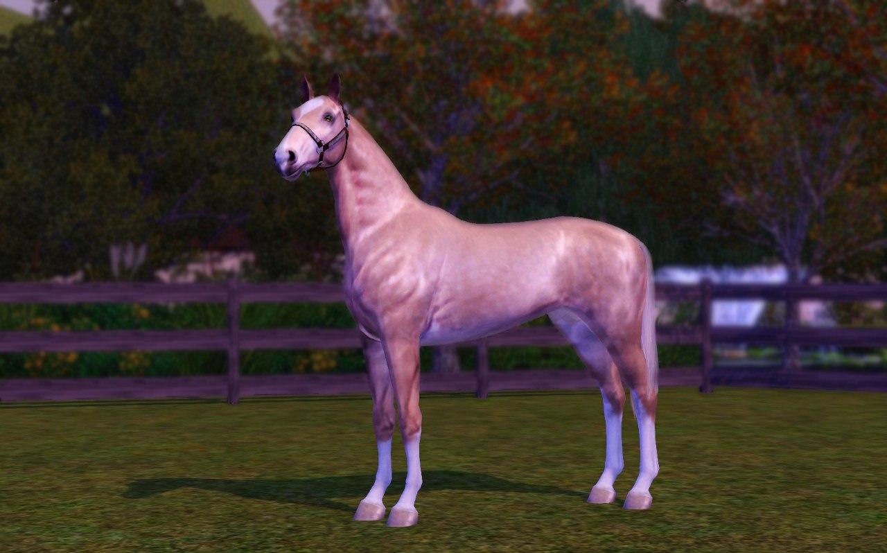 Регистрация лошадей в RHF 1.1 PWJ98NS4VEY