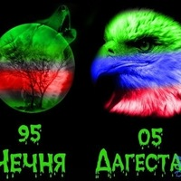 Анкета Андрей Аршавин
