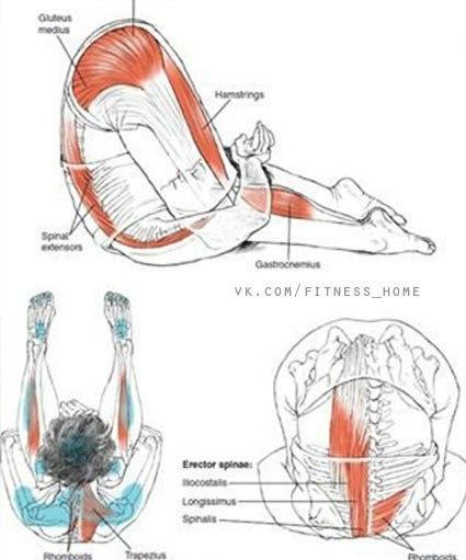 Растягиваем ноги после тренировки и вне тренировки… (9 фото)