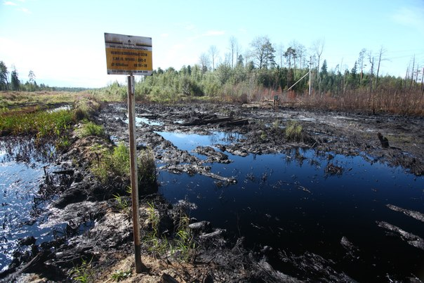 Халимат Текеева,   $3-4 доллара за баррель Роснефти за нашу природу