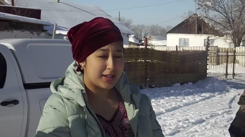 Алматы облысында қақаған суықта жаралы аққу құтқарылды