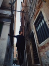 Никита Алексеев фото #44