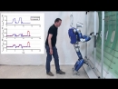 TORO Multi Contact Balancing of Humanoid Robots in Confined Spaces Utilizing Knee Contacts