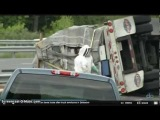 Truck Overturns In Delware Carrying 16-20 Million Bees