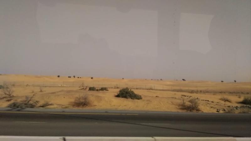 Арабские Эмираты (Видео 15)