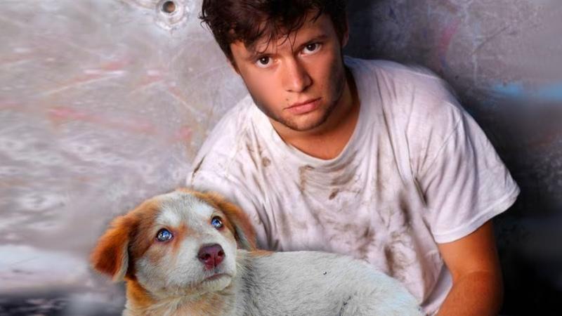 Однажды женщина помогла одинокому пареньку с маленьким щенком А через много лет он ее встретил