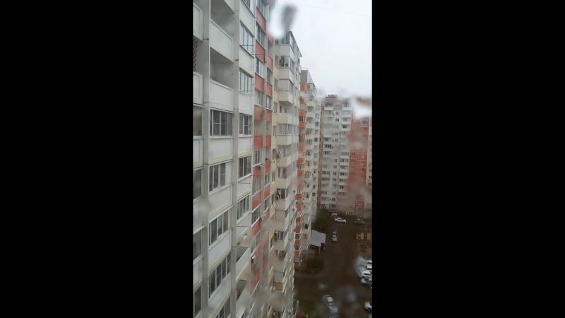 Аверкиева д. 6, 1-й подъезд, 13 этаж. 14.09.18.