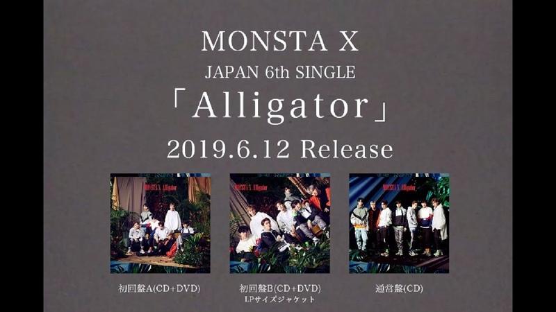 [YT][17.05.2019] MONSTA X Alligator-Japanese ver.- Music Video(Short ver.)