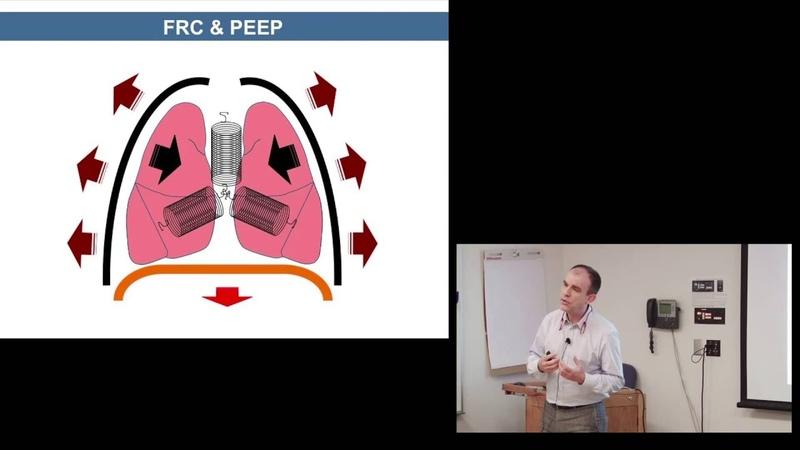 NEONATAL PULMONARY PHYSIOLOGY