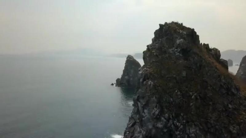 Дальневосточный морской биосферный заповедник ДВО РАН