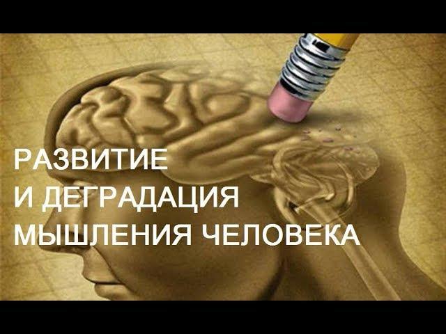 Развитие и деградация мышления человека Александр Белов
