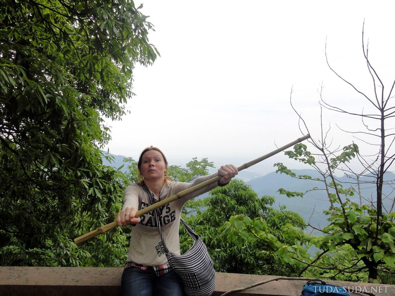 Бамбук Эмэйшань