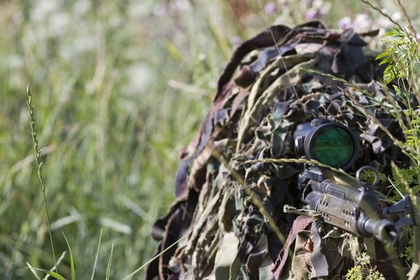Игра на наблюдательность: найди снайпера