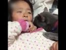 Кошечка успокоитель