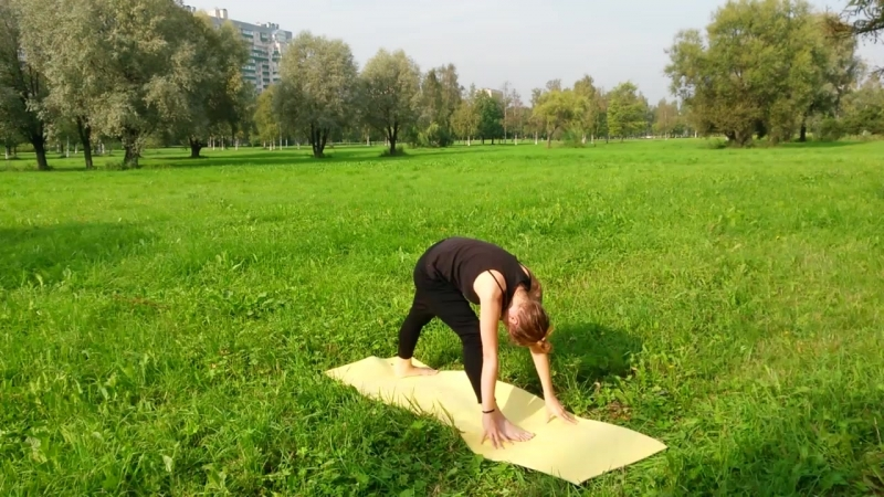 Calligraphy Yoga by Alina Pokrovskaya