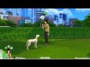 [Maggsie] The Sims 4: Пятнистая Жизнь 18   Чудо день   КОШКИ И СОБАКИ  