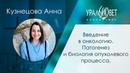 Введение в онкологию Патогенез и биология опухолевого процесса