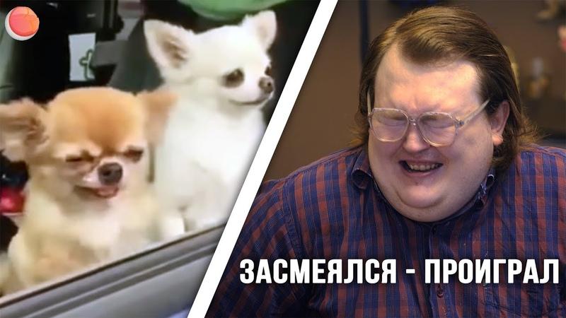 ЗАСМЕЯЛСЯ - ПРОИГРАЛ / БОТАНИК (Rust Blog)