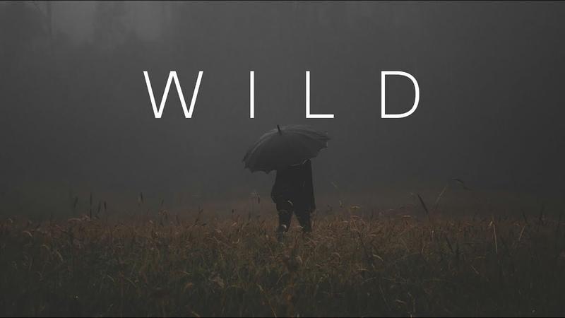 WILD | Beautiful Chill Mix