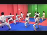 Тренировка в Фудзи-сан Додзё, г. Стерлитамак. Руководитель Рысаева Диляра Ильдаровна, 2 дан Сито-рю Ситокай.