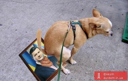 Насрав на Януковича