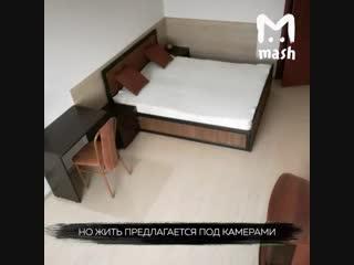 В Подмосковье сдают квартиру с камерами наблюдения