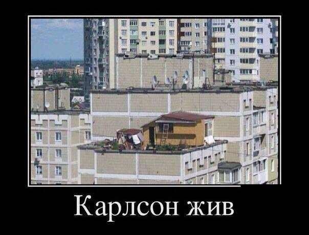 армянские приколы: