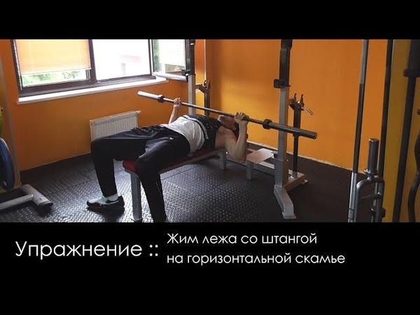 Упражнение для элементов(Горизонт) :: Жим лежа со штангой на горизонтальной скамье