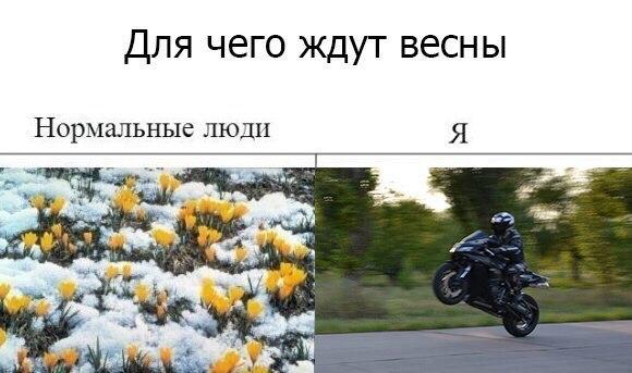Фото №456239545 со страницы Игоря Шистерова