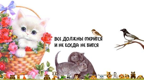 дизайнер открыток: