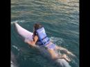 Моя Анна и безумно красивый и добрый дельфин