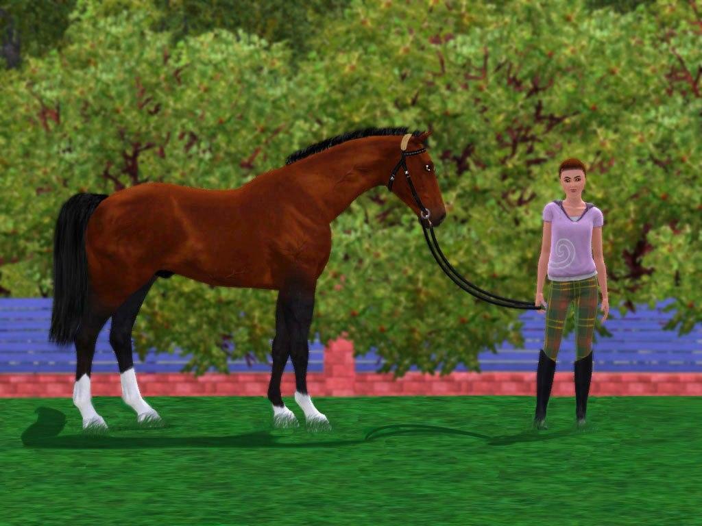 Регистрация лошадей в RHF 1.1 - Страница 2 A0PHsRWMxGo
