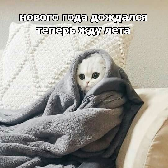 https://pp.userapi.com/c7008/v7008946/996ea/43wrm4foxyI.jpg