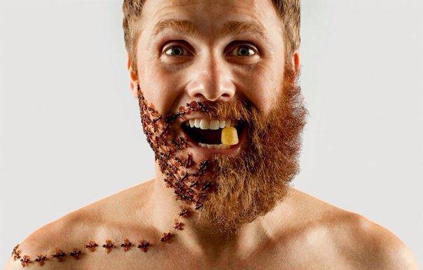 борода как арт объект - Facetoplace.ru