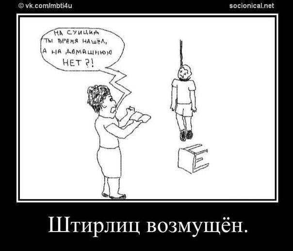 Драйзер Соционика Описание