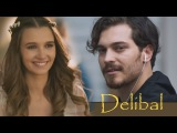 Delibal - Дикий мёд Baris &amp F
