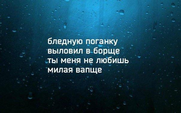 https://cs7050.vk.me/c7001/v7001088/1470e/0URkxzq1tlE.jpg