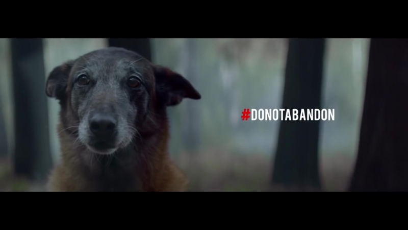 DoNotAbandon 30 Millions d'Amis Foundation