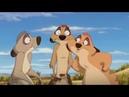 Король лев 3 Хакуна Матата 2004 мультфильм, комедия, приключения, семейный