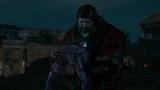 The Witcher 3 Wild Hunt Прохождение
