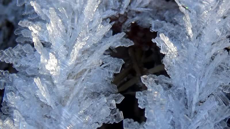 Кристаллы инея. Макросъемка